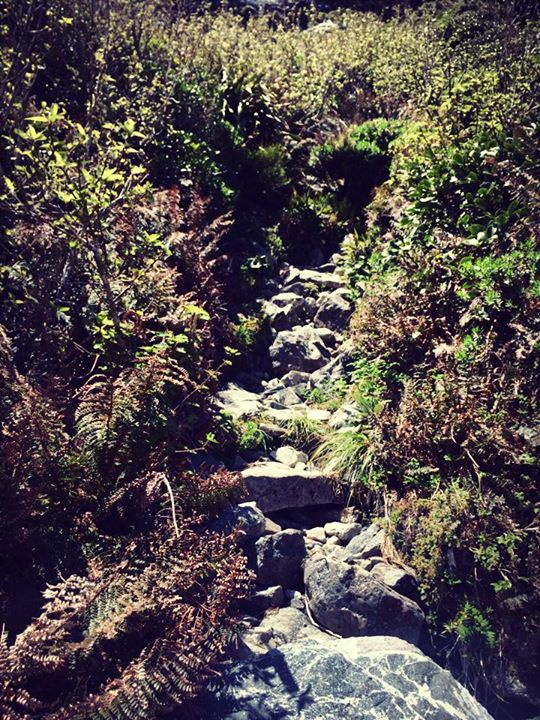 Picture of boulder trail