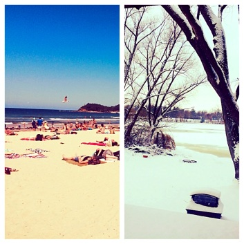 Side by side comparison of Sydney and Wisconsin