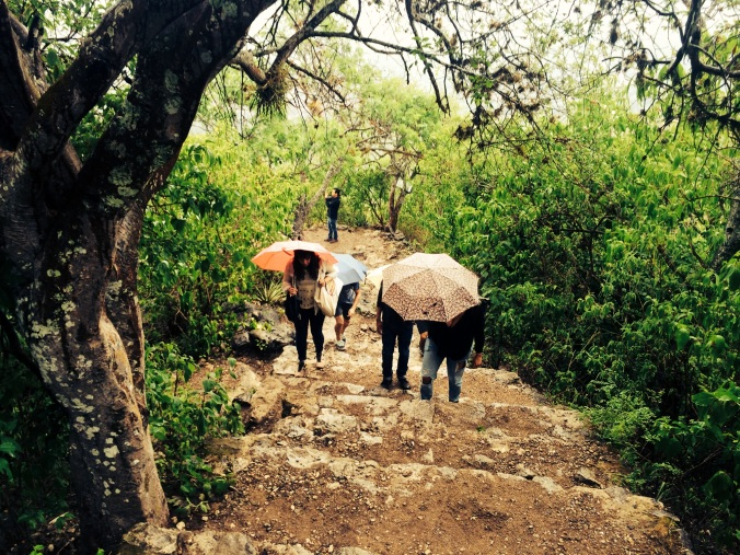 Hiking with umbrellas