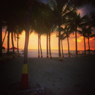 Picture of palm trees along the beach at sunset.